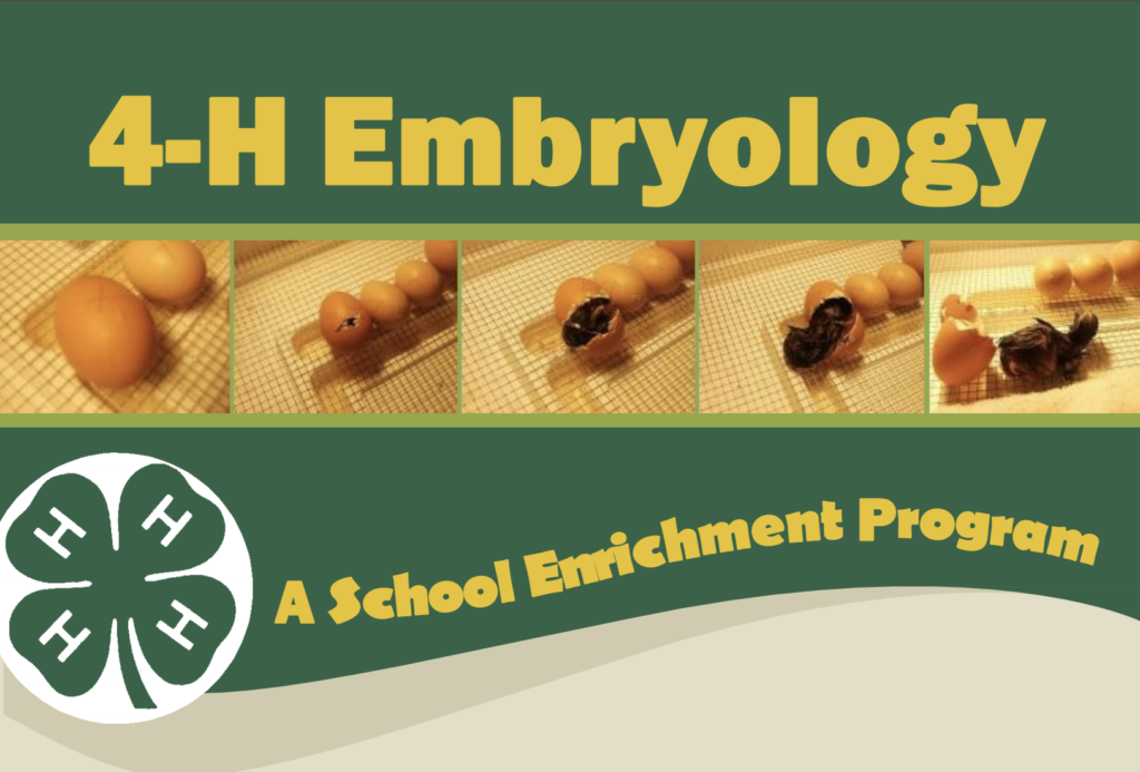 embryology pamphlet